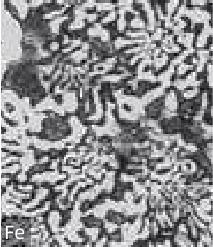合金金相图-01.jpg